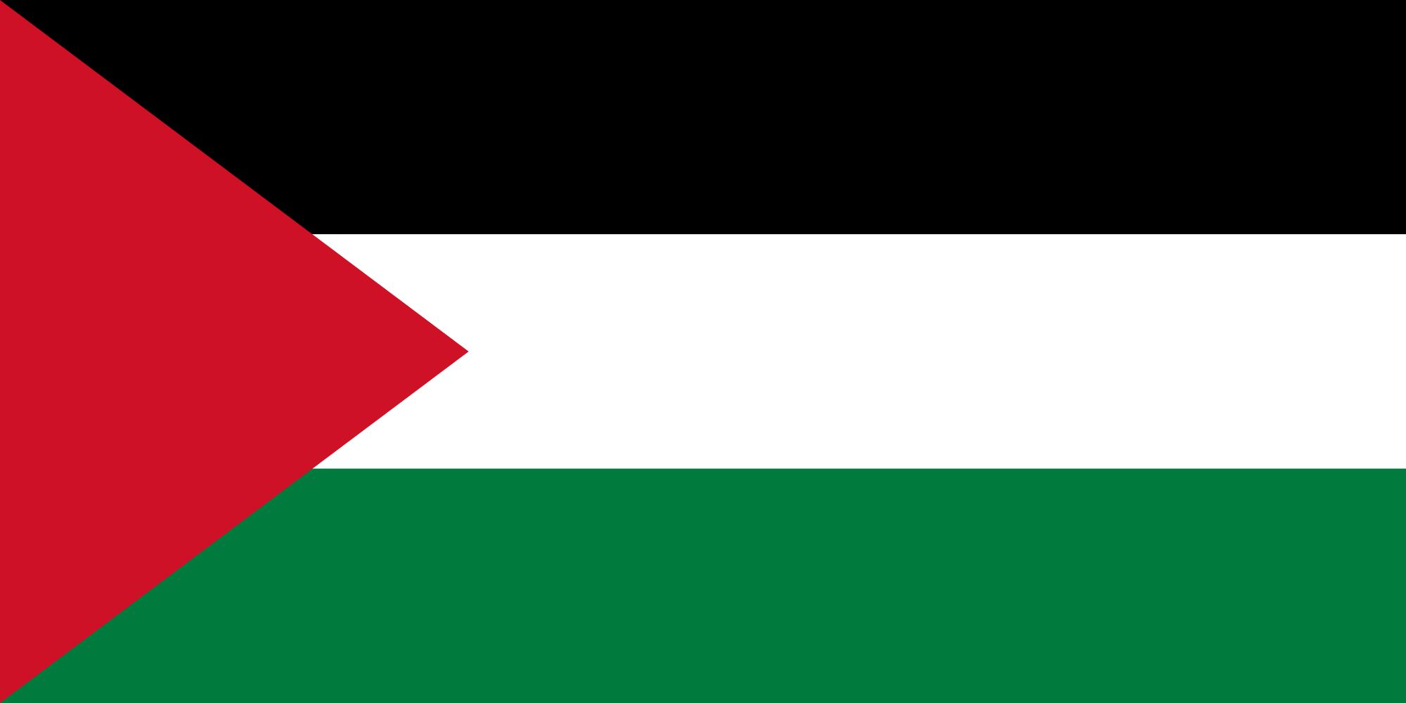 Offshore Software Development in Palestine