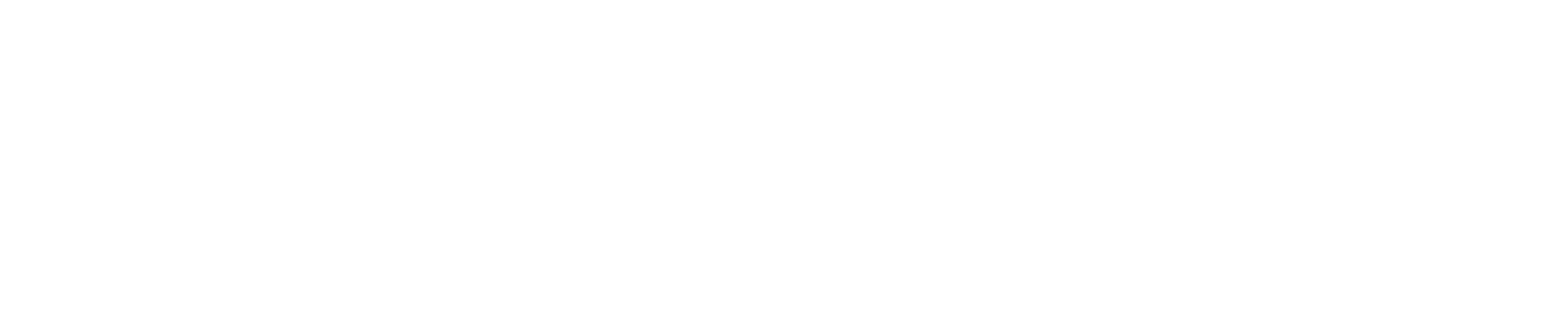 Accelerance - The Global Software Outsourcing Authority